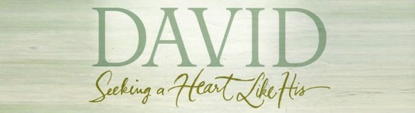 David: Seeking a Heart Like His - My Review  | The Engrafted Word