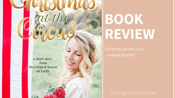 Christmas at the Circus – My Review