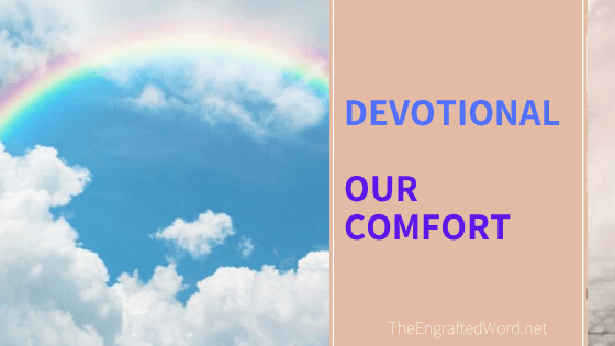 Our Comfort