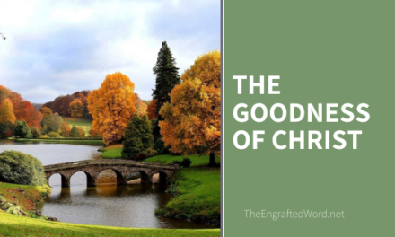 The Goodness of Christ
