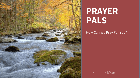 Prayer Pals November 2020